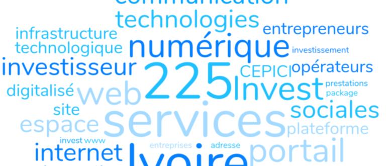 Article : 225Invest CI, l'autre nom de la dématérialisation des services à l'investisseur